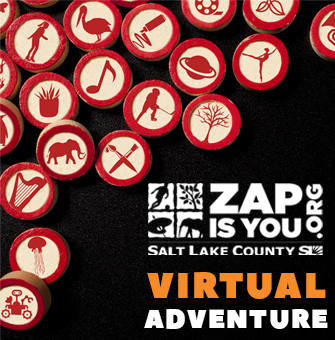 ZAP Virtual Adventure