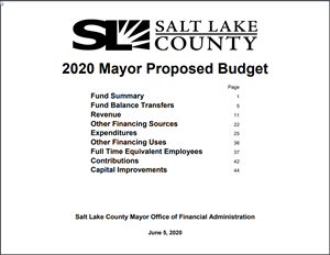 2020 Proposed Budget