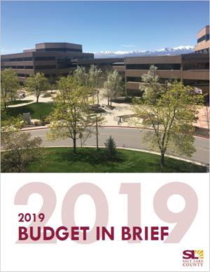 2019 Budget-In-Brief